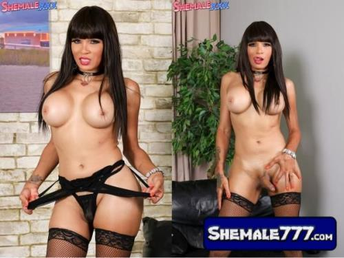 SheMale.Xxx: Jennifer Revlon - Hot As Ever Ms. Jennifer Revlon! (720p, MP4)