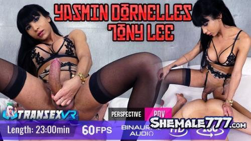 TransexVR: Yasmin Dornelles, Tony Lee - Shemale On Male (UltraHD 2K 1920p)