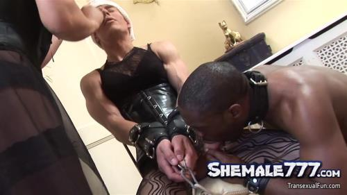 Transexualfun: Alison Dale, Zoe Fuckpuppet - Shemale Mistress with another shemale and black sub guy (HD 720p)